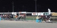 Harness Racing Lawyer - Delaware Racing Attorneys